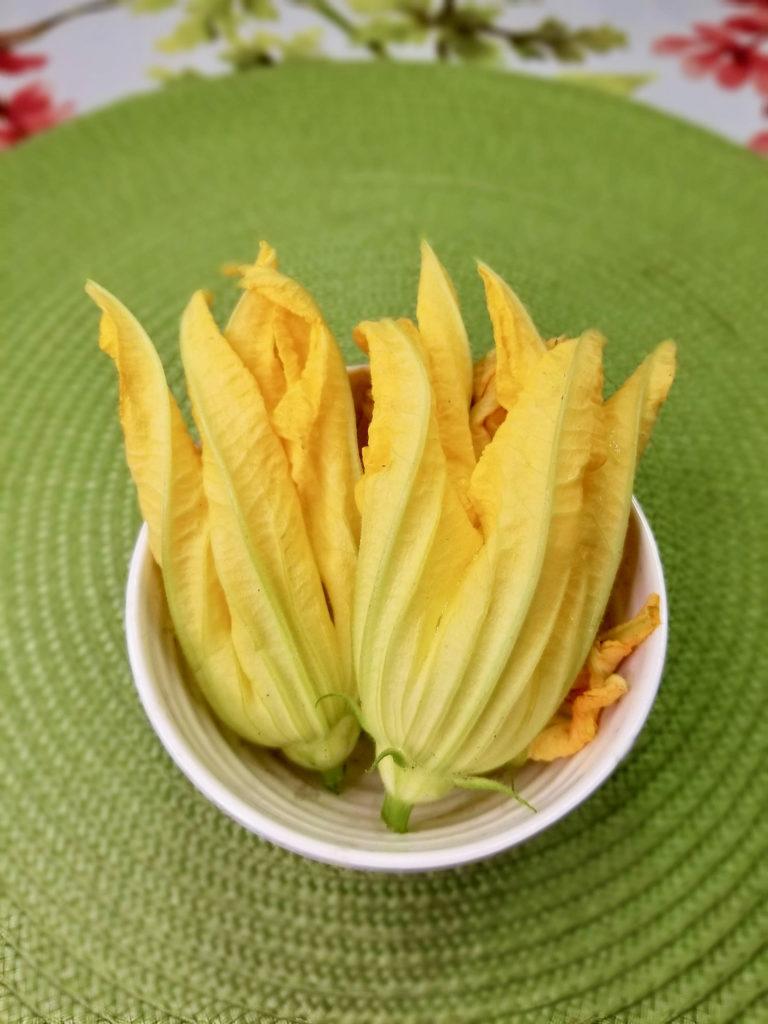 Zucchini Flower Blossoms